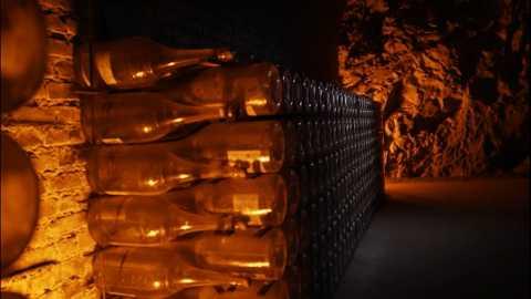 Champagne, une histoire franco-allemande (Le)