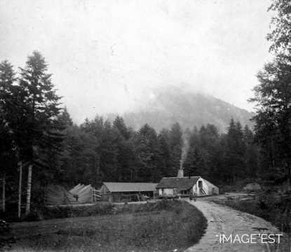 Scierie du Grand Roné (Celles-sur-Plaine)
