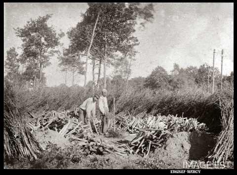 Meule de charbon (Vosges)