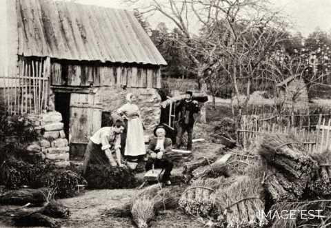 Fabrication de balais (Vosges)