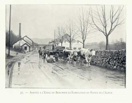 Transport de bois (Vosges)