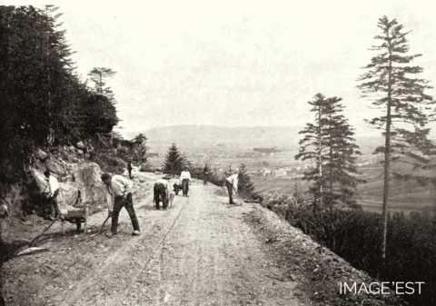 Route forestière (Vosges)
