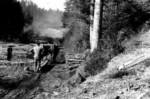 Transport de bois (Val-et-Châtillon)