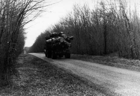 Transport de grumes (Meuse)
