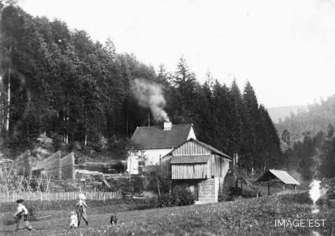 Scierie de Lajus (Celles-sur-Plaine)