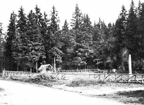 Pépinière des Xettes (Vosges)