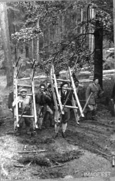 Remontée des Schlittes (Vosges)