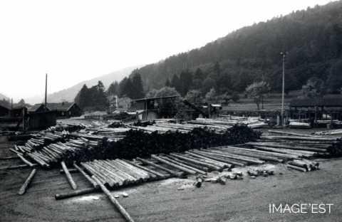 Centre de tri du bois (Shirmeck)