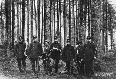 Aménagement de la forêt de Celles (Vosges)
